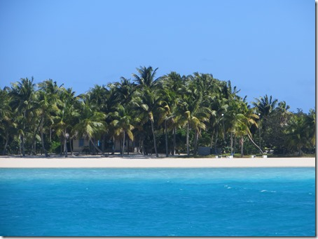 Musha et Rudder Cay (2)
