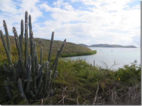 Culebra (152)