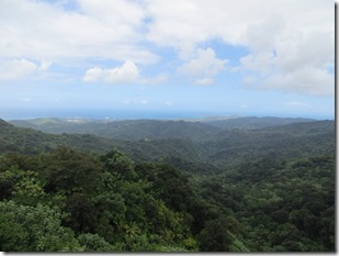 Puerto Rico (100)