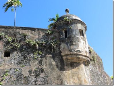 Puerto Rico (130)