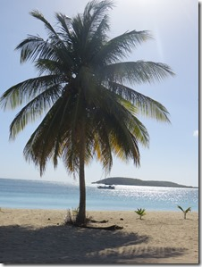 Vieques (48)