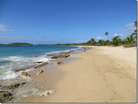 Vieques (64)