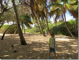 Vieques (68)