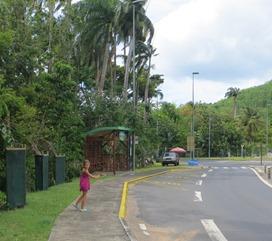Guadeloupe (79)