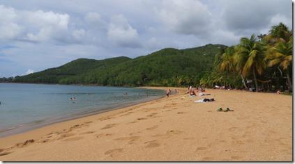 Guadeloupe (99)