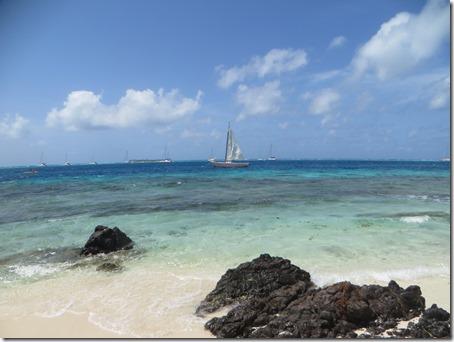 Tobago Cays (17)