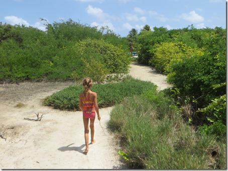Tobago Cays (22)
