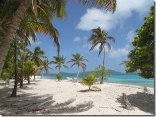 Tobago Cays (29)