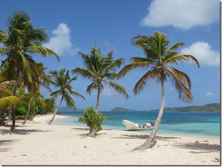 Tobago Cays (31)