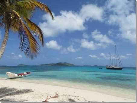Tobago Cays (32)