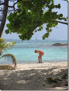 Tobago Cays (33)