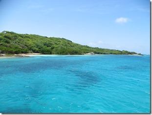 Tobago Cays (47)