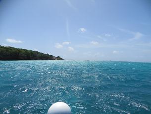 Tobago Cays (7)