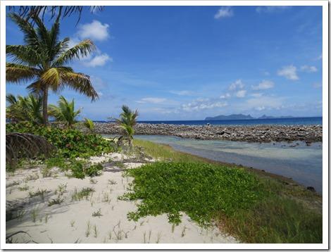 Sandy Island (113)