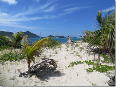 Sandy Island (114)