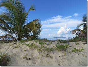 Sandy Island (12)