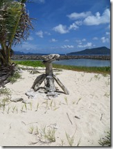 Sandy Island (133)