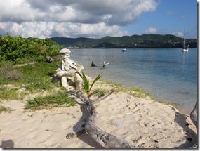 Sandy Island (54)