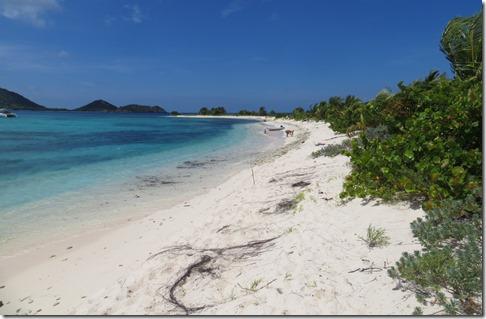 Sandy Island (96)