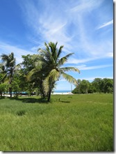 Tobago Petit Bateau (20)