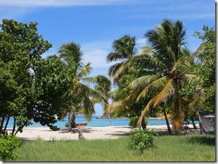 Tobago Petit Bateau (21)