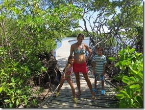 Grande Anse des Salines (15)