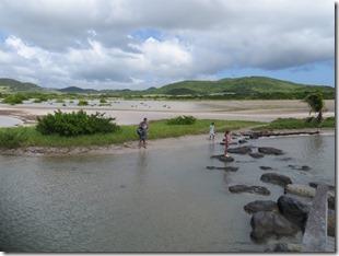 Grande Anse des Salines (39)