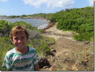Grande Anse des Salines (54)