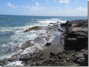 Grande Anse des Salines (60)