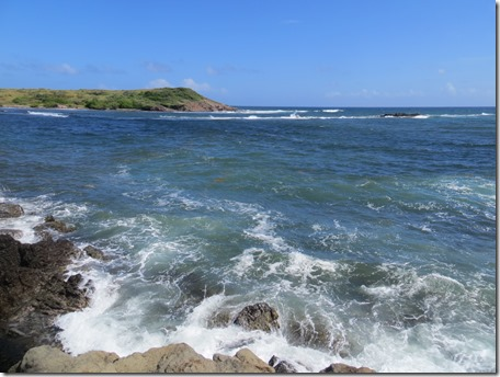 Grande Anse des Salines (61)