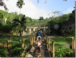 Jardin du Carbet (4)