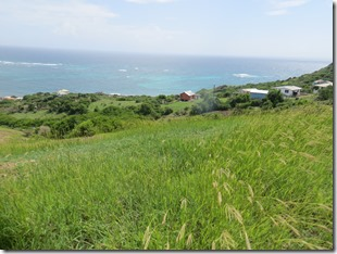 Petite Martinique (22)