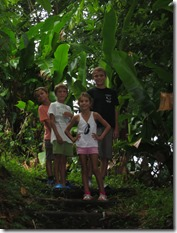 Soufriere volcan (13)
