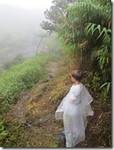 Soufriere volcan (47)