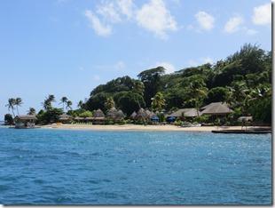 Young Island (1)