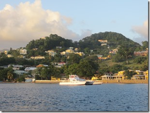 Young Island (57)