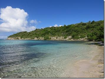 Great Bird Island (54)