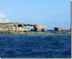 Great Bird Island (59)