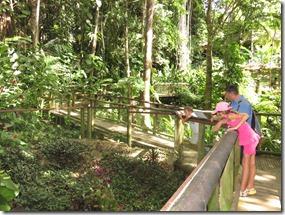 Zoo Parc des Mamelles (8)