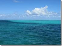 Buck Island (5)