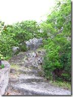 Saba (160)