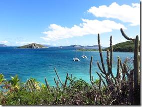 Peter Island (8)