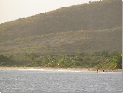 Vieques Las Chivas (8)