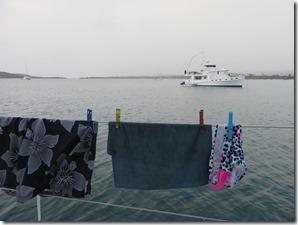Vieques Sun Bay (39)