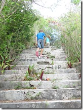 Eleuthera Royal Island (44)