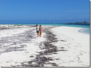 Green Turtle Cay (4)
