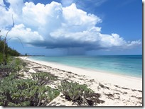 Green Turtle Cay (61)