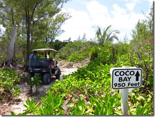 Green Turtle Cay (62)