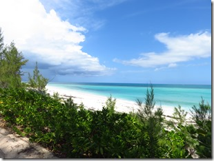 Green Turtle Cay (64)
