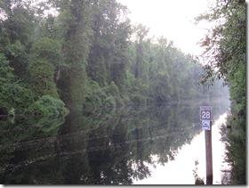 Dismal Swamp (23)
